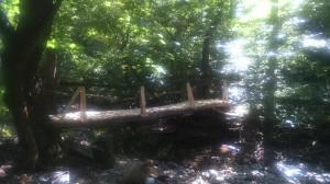 2.10  мост Долапите